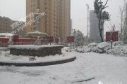 泗阳左岸逸品:天气寒冷 客户看房热情不减