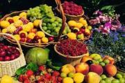 泗阳海峰·运河首府:水果嘉年华 来一场与水果的邂逅吧