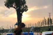 桃源湖·宝莲城音乐沙龙正在绽放,期待你的莅临